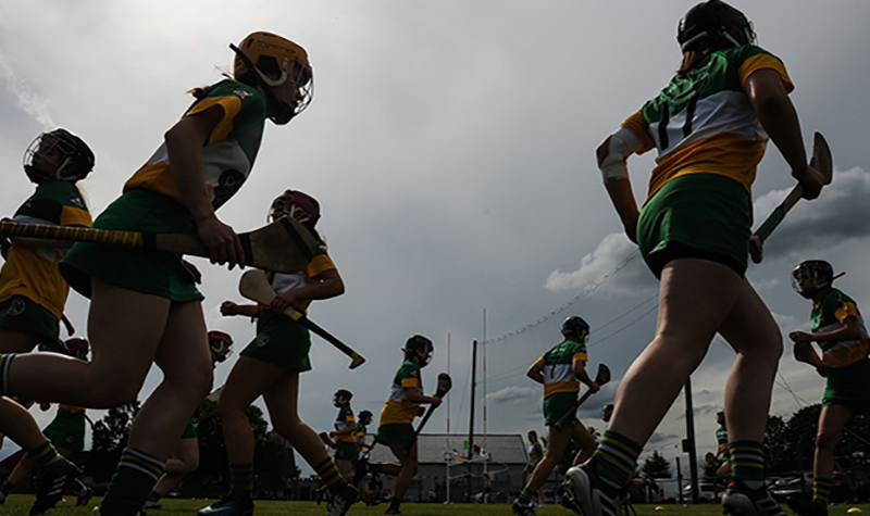 THIRD LEVEL CAMOGIE UPDATE